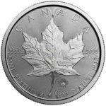 1 Unze Maple Leaf Platinmünzen 2017 Rückseite