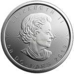 1 Unze Maple Leaf Platinmünzen 2019 Vorderseite